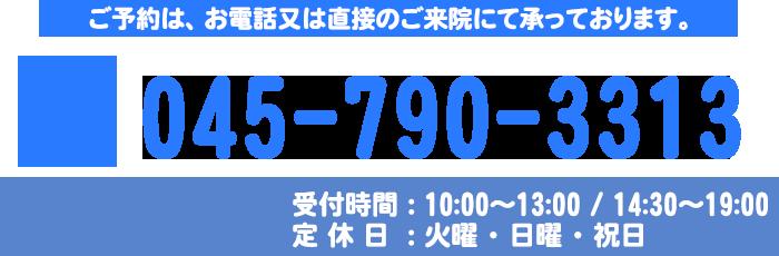 電話番号 045-790-3313